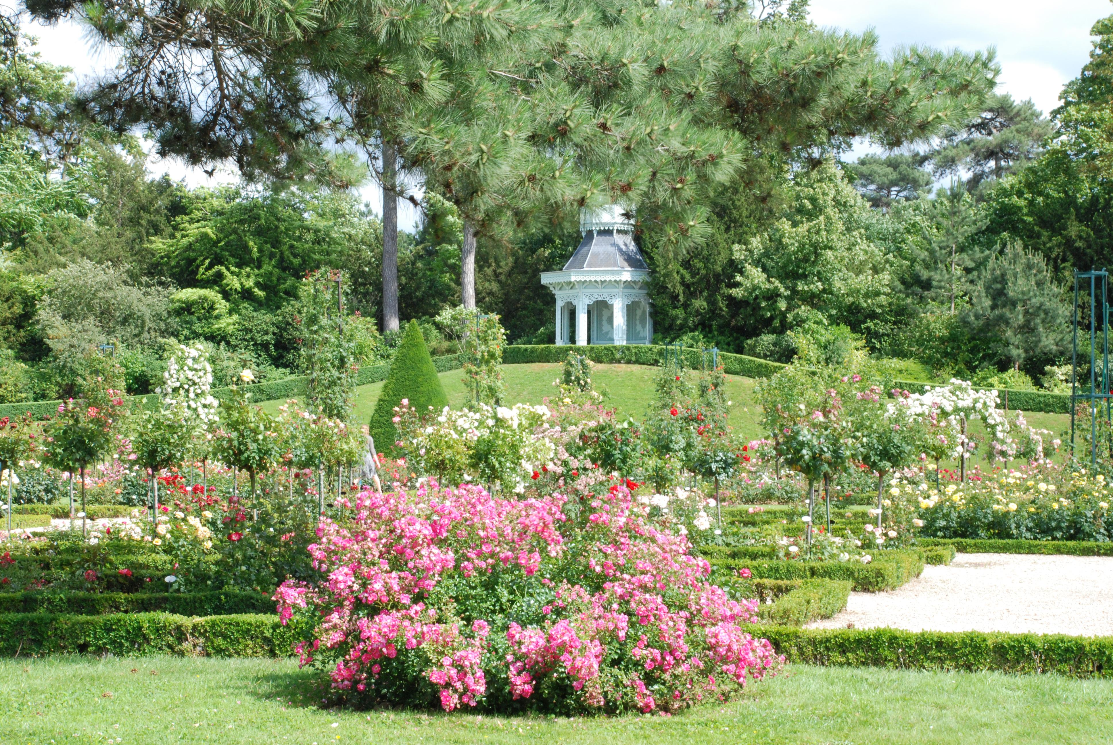 Weekend de la rose bagatelle faire le tour du monde en for Bagatelle jardin paris