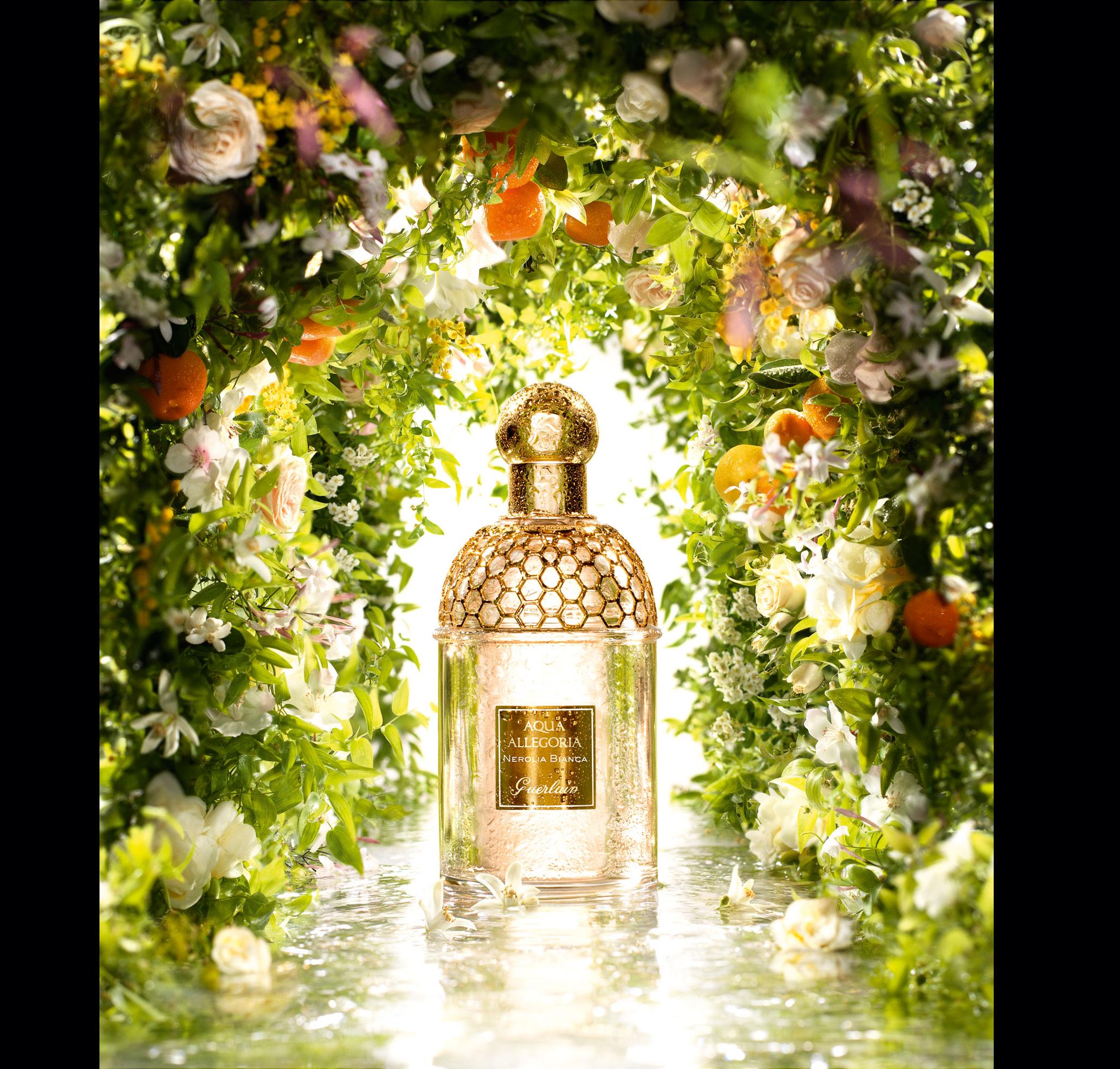 comment reconna tre les hesp rid s faire le tour du monde en parfums. Black Bedroom Furniture Sets. Home Design Ideas