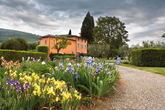 L'Iris de Florence, de Santa Maria Novella pour Villa la Massa