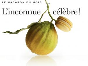 La bergamote, le dernier macaron Pierre Marcolini