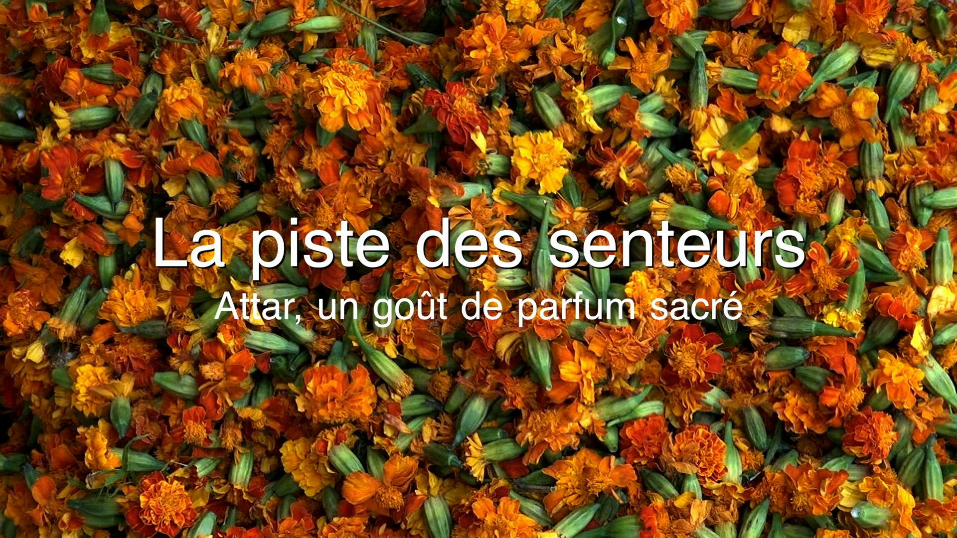 Attar, un goût de parfum sacré est rediffusé le 16 juin 2015 sur Ushuaïa TV
