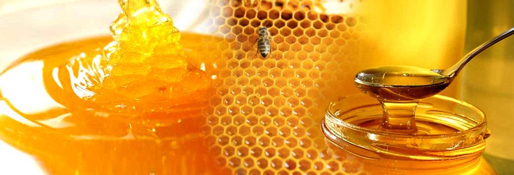 voyage au pays du miel faire le tour du monde en parfums. Black Bedroom Furniture Sets. Home Design Ideas