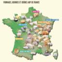 Dégustation : accord fromages AOP et vins