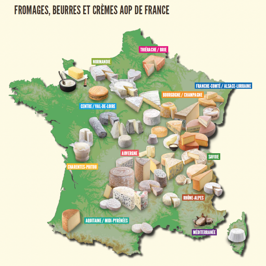Dégustation : accord fromages et vins