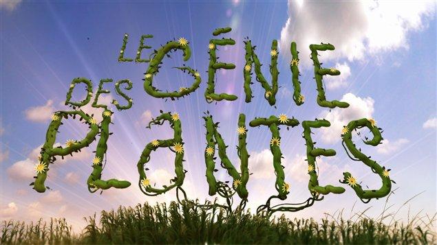 Le génie des plantes, doc sur Arte+7