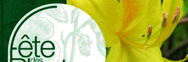 Les plantes odorantes à l'honneur à Saint-Jean de Beauregard