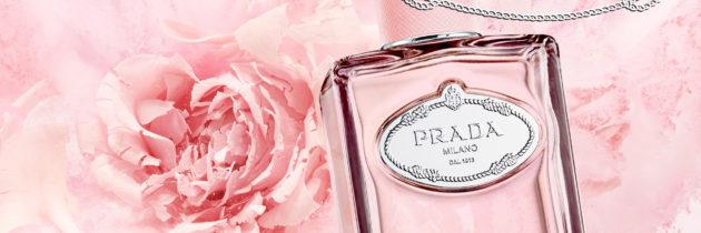 Infusion de rose de Prada