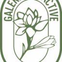 Galerie Olfactive, un rendez-vous éphémère à Grasse