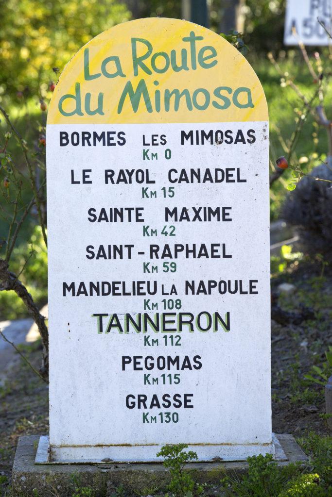 l'agenda mimosa