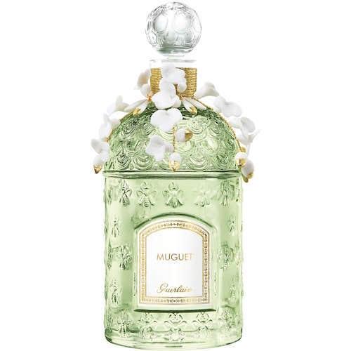 la vision du parfumeur